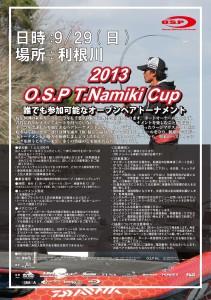 2013namikicup_cs4win1